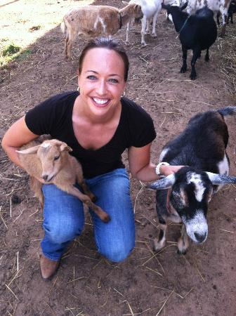 Cornerstone Farm: Playing with the goats