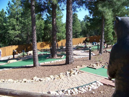 Wyndham Flagstaff Resort: Mini golf. Lot's of fun!