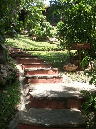 Eranda Herbal Spa: Le jardin luxuriant