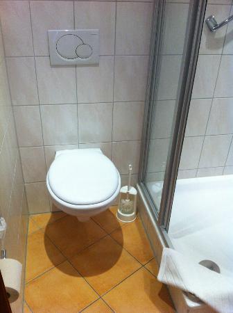 Wartburg Hotel: WC