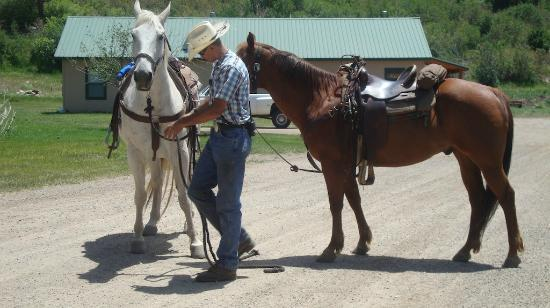Colorado Trails Ranch: Our Horses