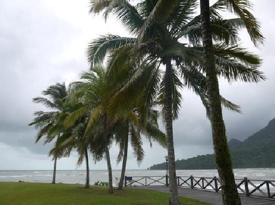 Damai Puri Resort & Spa: территория отеля