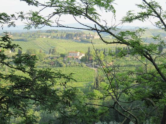 Az. Agr. La Ripa: uitzicht nabij S.Gimignano (vanaf terras restaurant).