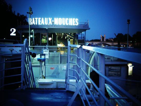 bateaux mouches from pont l 39 alma photo de la seine paris tripadvisor. Black Bedroom Furniture Sets. Home Design Ideas