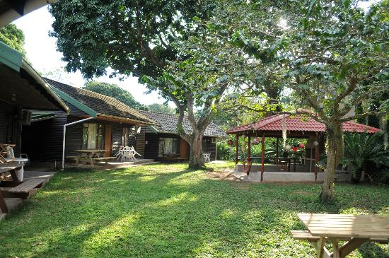 Lai-La Log Cabins : Open area