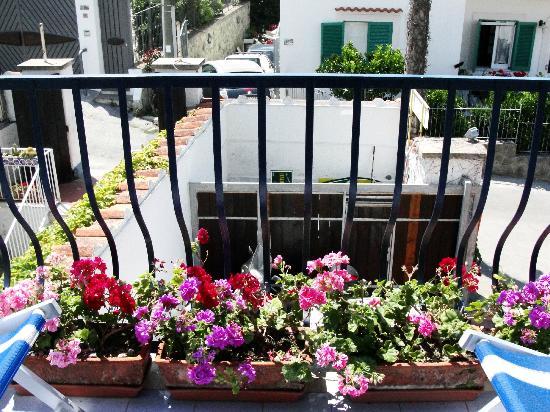 Pensione Villa Mafalda: вид из номера