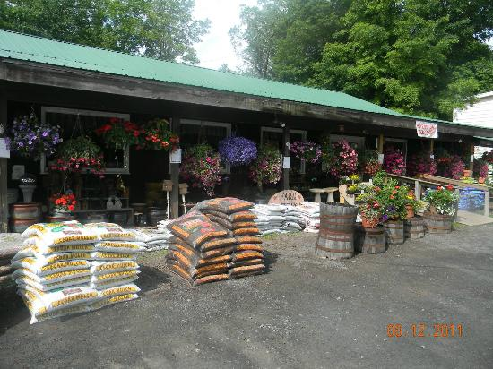 The Catskill Mountain Country Store and Restaurant: The store front
