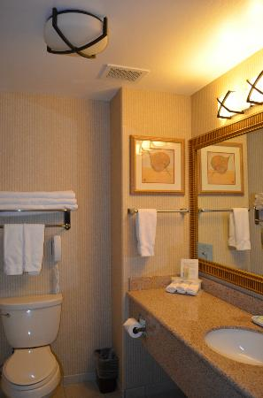 Holiday Inn Express & Suites - Gunnison : Large and clean bathroom