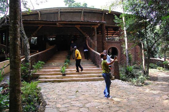 The RainForest Lodge: Entrance to Dining Area