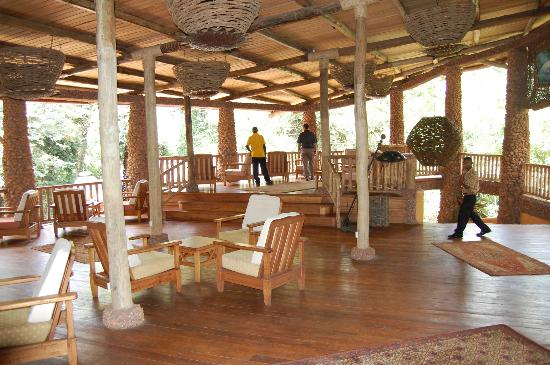 The RainForest Lodge: Dining Area