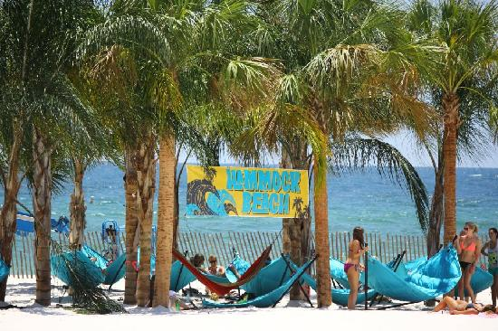 Gulf Shores, Αλαμπάμα: Hammock Beach at the Hangout Music Fest 2012