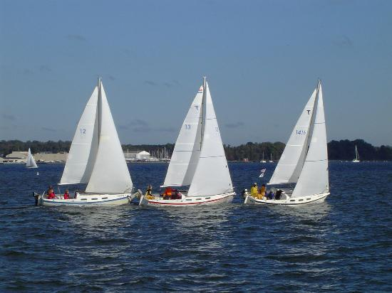 ‪Chesapeake Sailing School‬
