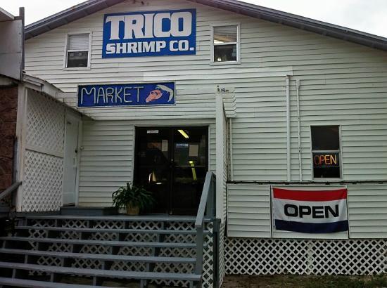 Trico Shrimp Co : Entrance