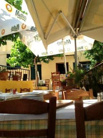 Taverna O Thespis: Shade