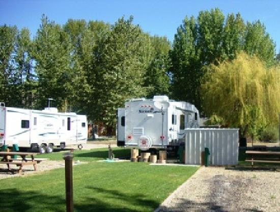 Cottonwood Cove RV Resort: Around Campground