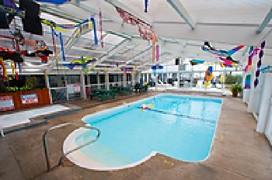 Crest Motel: Indoor Pool Area