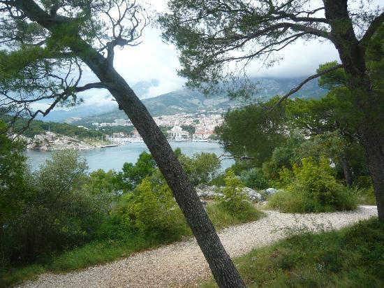 Aparthotel Tamaris: Fine gangstier i området mot Makarska