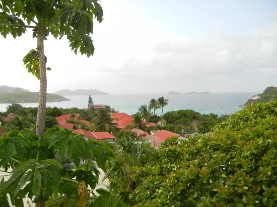 Hotel Le Village St Barth: View from terrace