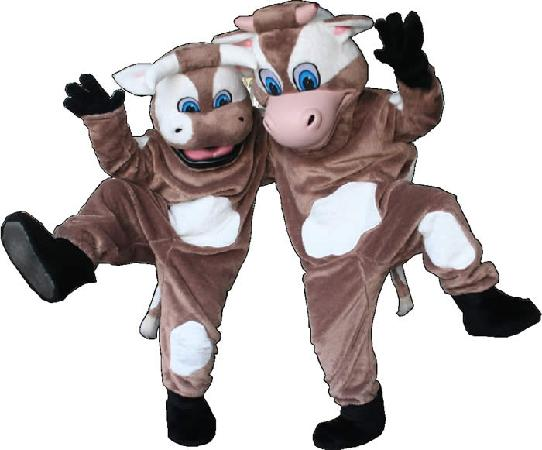 Maleny Dairies: Come and meet our Dancing Cows