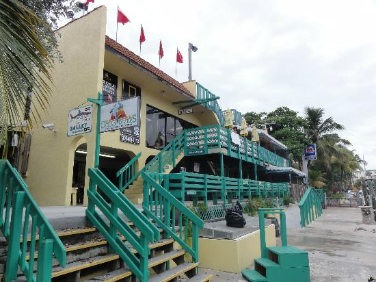 Sharkey S Pub Galley Restaurant In Key Largo Fl