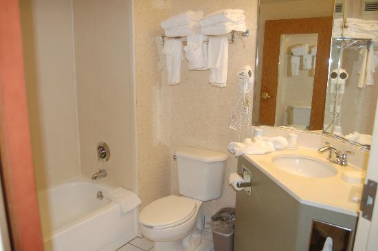 Hampton Inn Middletown: Bathroom