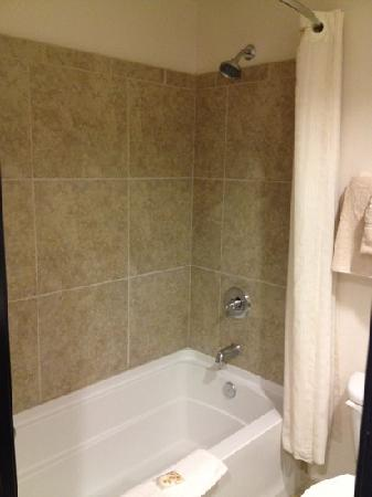Best Western Legacy Inn & Suites : decent shower