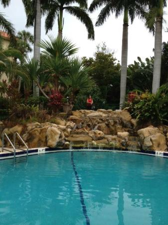 Renaissance Boca Raton Hotel: Waterfall beside the pool