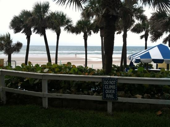"Flamingo Inn: The ""over the top"" view from my rooms patio @ oceanfront suite B.........AWESOME!"