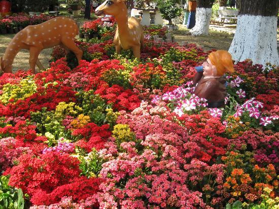 Da Lat, Wietnam: dalat flower festival
