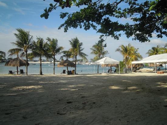 Bluewater Maribago Beach Resort: Maribago Bluewater Beach Resort,Royal Bungalow
