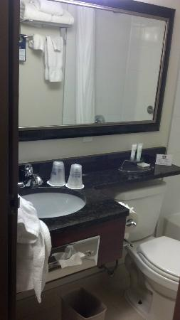 Best Western Plus Chocolate Lake Hotel: View of the sink and toilet