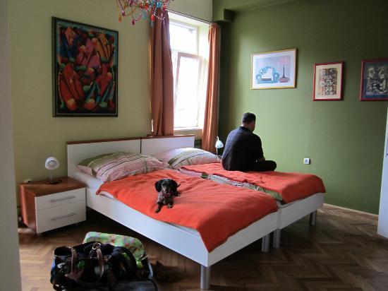 Camera Felice: Green room