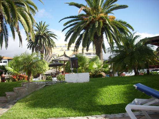 Interpalace by Blue Sea: Jardines