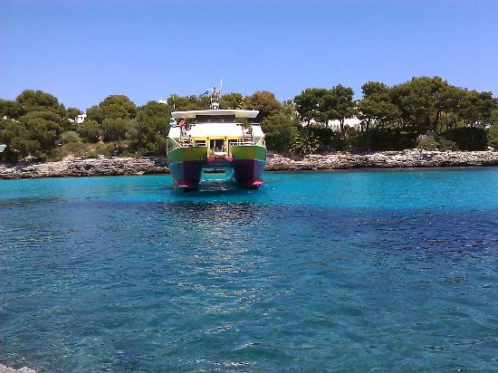 Hotel D'Or: Starfish boat 20euros approx