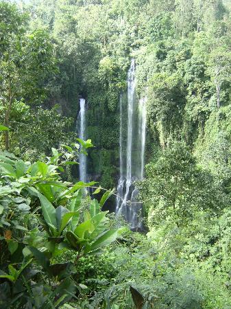 Sekumpul Waterfalls: looking down on main waterfalls