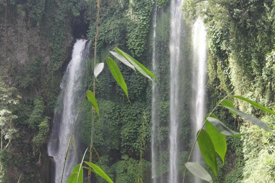 Sekumpul Waterfalls: 2 of 7 waterfalls