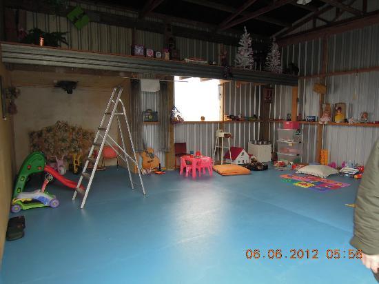 Mokoia Downs Estate B&B: Playroom