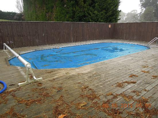 Mokoia Downs Estate B&B: Pool