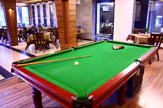 Kasauli Castle: Pool Table. LAWN