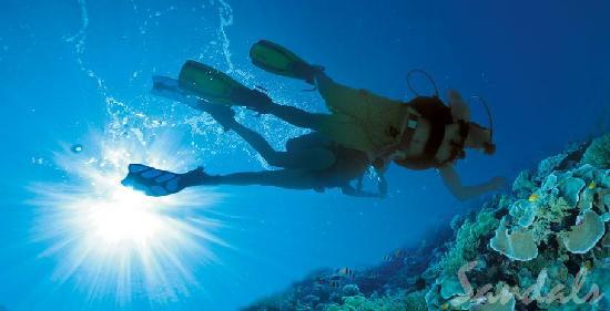 Scuba Diving at Sandals Royal Plantation