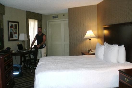 Hampton Inn & Suites Memphis - Beale Street: room