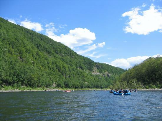 Kittatinny River Beach Campground: view from tent