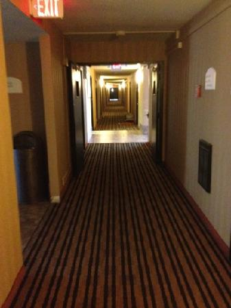 Econo Lodge: Fan in the hallway in the distance on the right, obviously trying to rid the hotel of the smell.