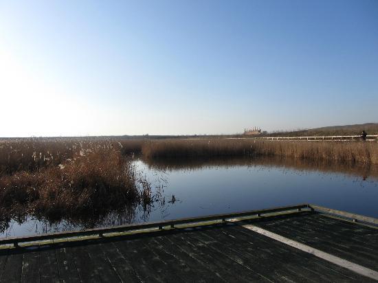 Rainham Marshes: Tranquility
