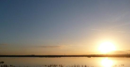 Rainham Marshes : Beautiful sunset over the marsh