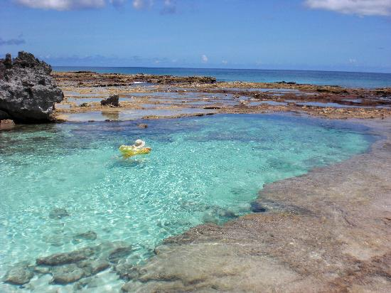 Rota Northern Mariana  City pictures : ... Beach 1 Picture of Rota, Northern Mariana Islands TripAdvisor
