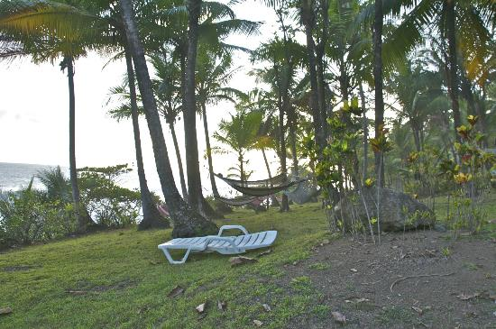 La Leona Eco Lodge: Hammocks strung along the beach front area