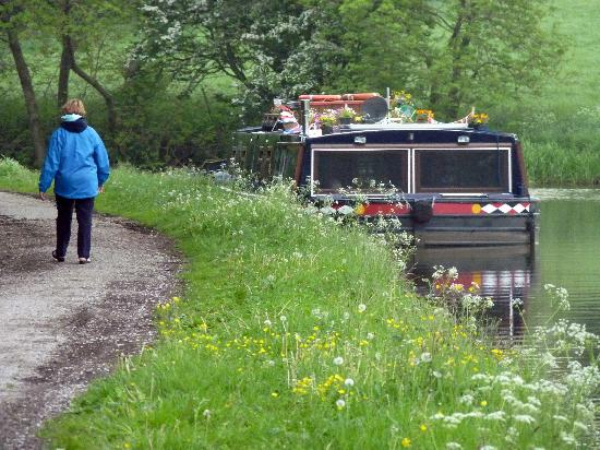 Leeds and Liverpool Canal: Walking the tow path alongside Lady Teal