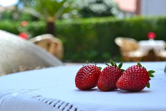 Nido Verde: home-grown strawberry
