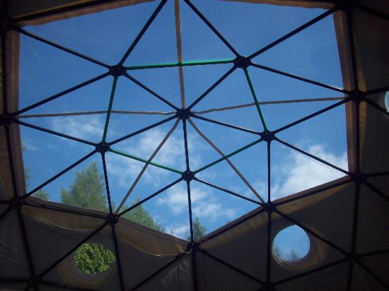 Dome Garden: roof of dome